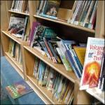 Bookmobile Shelves